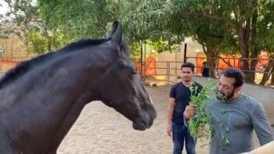 Photo of घोड़े के साथ पत्तियां चबाते दिखे सलमान, कहा 'बहुत अच्छा है'