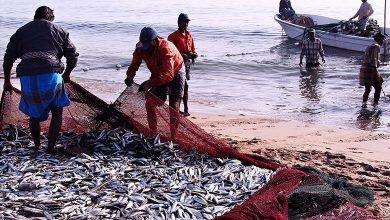 Photo of मछुआरों के लिए 20 हजार करोड़ आवंटित